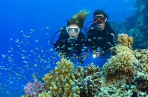 Start Tauchkurs am Tag - Open Water Diver @ Tauchturm Seiersberg