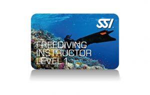 Freitauchkurs und Freedive Instructor Kurs Level 1 und 2 mit Nik Linder @ Tauchturm Seiersberg | Seiersberg | Steiermark | Österreich