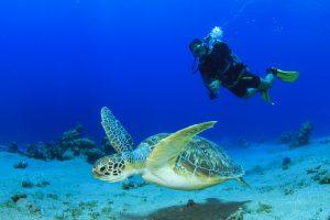 Tauchkurs am Wochenende - Open Water Diver @ Tauchturm Seiersberg